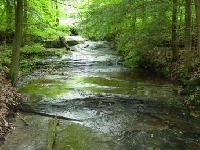 Have a Great Hunting Trip